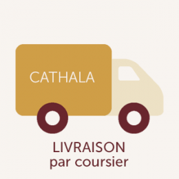 bt-expedition-livraison-coursier.png